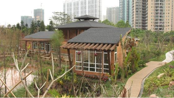 珠江公园木结构园林建筑